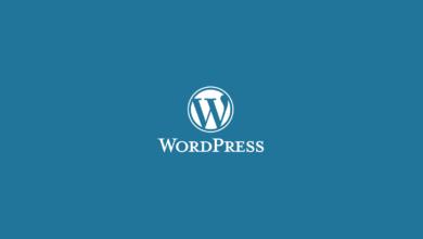 wordpress eklenti kalıntılarını temizleme