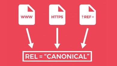 canonical etiketi nedir