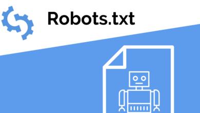 Robots txt nedir nasıl oluşturulur