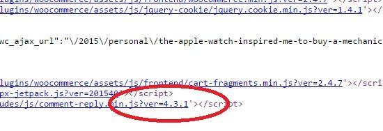 Wordpress Javascript kaynağı üzerinden versiyon sızıntısı
