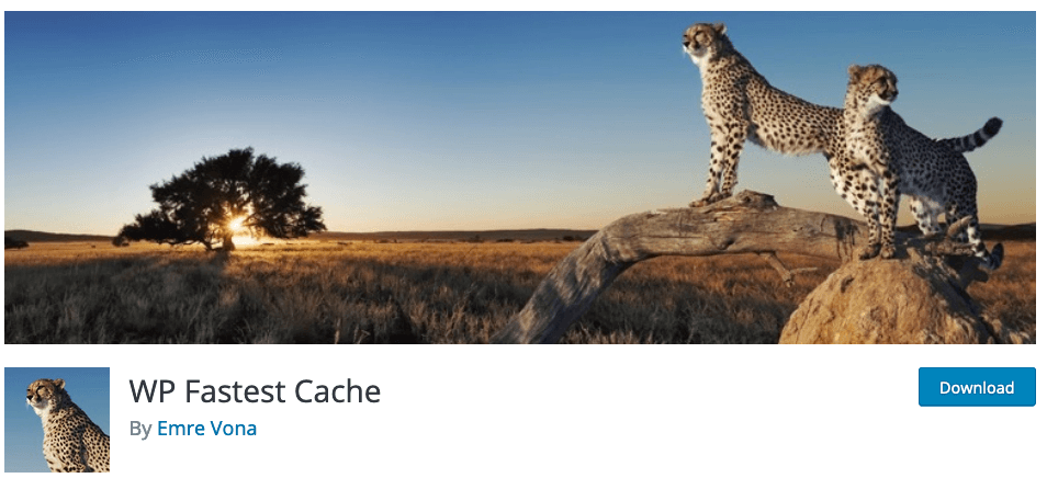 En İyi WordPress Cache Eklentisi, wp fastest cache