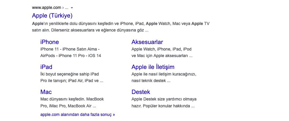 Apple Türkiyeden yapılan arama sorgusu örneği